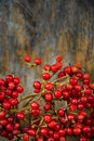 Red berries on a wooden background Royalty Free Stock Photos