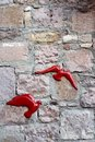 Red birds on stone wall Royalty Free Stock Photo