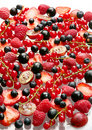 Red and black berry Royalty Free Stock Photo