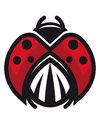 Red and black ladybug or ladybird displaying the patterned thorax vector cartoon illustration Royalty Free Stock Photos