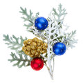 Red and blue Christmas balls on branch Royalty Free Stock Photo