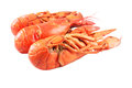 Red boiled lobster Royalty Free Stock Photo