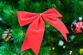 Red bow on christmas tree Stock Photos