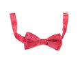 Red bow tie isolated on white a background Royalty Free Stock Image