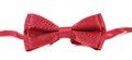 Red bow tie isolated on a white background Royalty Free Stock Images