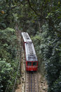 Red Brazilian Train Green Jungle Tijuca Rio Brazil Royalty Free Stock Photo