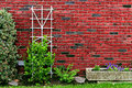 Red brick wall at back yard with green plants at home building decorated with tree, rocks, bushes and flower pot. Royalty Free Stock Photo