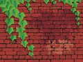 Red brick wall with ivies. Stock Photo