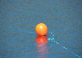 Red buoy with blue rope in water marking an anchor Royalty Free Stock Photo