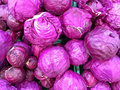 Red cabbage fresh picked on display at the market Royalty Free Stock Photo