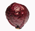 Red cabbage isolated white Stock Photo