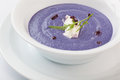 Red cabbage puree soup Royalty Free Stock Photo