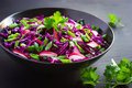Red cabbage, radish and spring onion salad Royalty Free Stock Photo