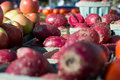 Red Cactus Pear Royalty Free Stock Photo