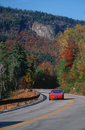 Red car on autumn road Royalty Free Stock Photos