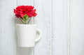 Red Carnation flower in a cup Royalty Free Stock Photo