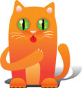 Red cat Royalty Free Stock Photography