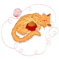Red cat with a bowl of food fluffy ginger who sleeps beside full and ball yarn Stock Photos