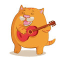 Red cat playing guitar fat and singing a song Royalty Free Stock Photo