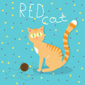 Red cat plays with wool ball Royalty Free Stock Photo