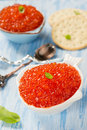 Red caviar in fish shape bowl with crackers closeup selective focus Stock Images
