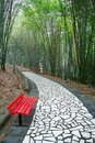 A red chair  in bamboo grove Royalty Free Stock Photo