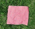 Red Checkered Cloth On Green G...