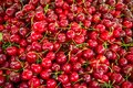 stock image of  Red Cherries with stalks on street market