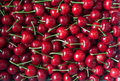 Red cherry Royalty Free Stock Photo