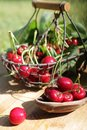 Red cherry and hand basket Royalty Free Stock Photo