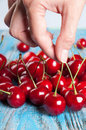 Red cherry in hand Royalty Free Stock Photo