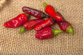 Red chili hot and brown sack Royalty Free Stock Photo