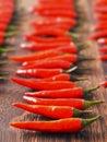 Red chili padi Royalty Free Stock Photo