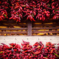Red chili peppers close up shot of a drying on a wall Royalty Free Stock Images