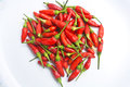 The red chili on white background stock photo Royalty Free Stock Photos
