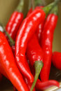 Red chillies in a bowl, macro, shallow DOF Royalty Free Stock Photo