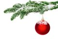 Red Christmas bauble hanging from a snow-covered twig Royalty Free Stock Photo
