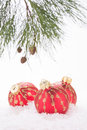 Red christmas baubles and pine tree branch in snowflakes close up Stock Photos