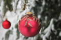 Red Christmas Ornament on Snow Capped Pine Branch Stock Photo