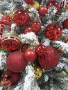 Red Christmas Ornaments -- Shiny, Sprakling Red Ornaments on Snowy X-Mas Tree Royalty Free Stock Photo