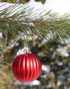 Ribbed red ball hanging from outdoor evergreen tree in the snow with semi-transparent cross and body of Jesus Royalty Free Stock Photo