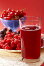 Red compote Royalty Free Stock Photos