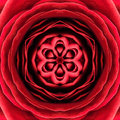 Red concentric flower center mandala kaleidoscopic design macro close up Royalty Free Stock Photos