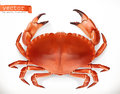 Red crab. 3d vector icon. Seafood Royalty Free Stock Photo