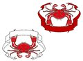Red crab with ribbon in claws for mascot or emblem design Royalty Free Stock Images