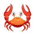 Red crab, sea creature. Colorful cartoon character Royalty Free Stock Photo