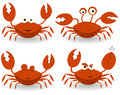 Red Crabs Characters Royalty Free Stock Photography