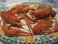 Cooked crayfish on a plate ready for eat Royalty Free Stock Photo