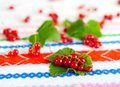 Red currant berries on a leaf green Stock Image