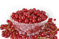 Red currant in bowl glass on white background Stock Photos